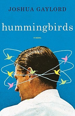 Hummingbirds by Joshua Gaylord