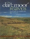 The Dartmoor Reaves: Investigating Prehistoric Land Divisions