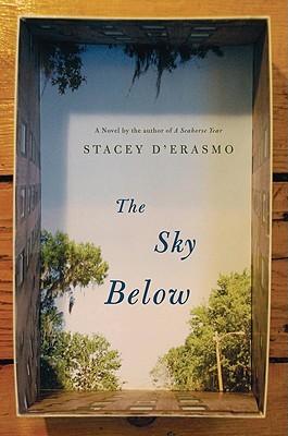 The Sky Below by Stacey D'Erasmo