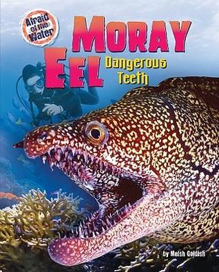 Moray Eel: Dangerous Teeth