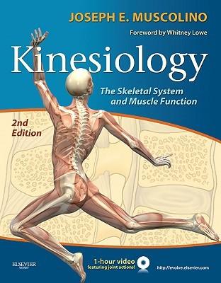 Kinesiology by Joseph Muscolino