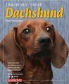 Training Your Dachshund