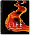 Life: A Journey Through Time