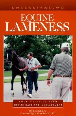 Understanding Equine Lameness
