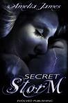 Secret Storm (College Romance, #2)