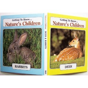 deer-rabbits-getting-to-know-nature-s-children