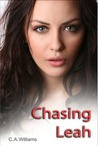 Chasing Leah (Journey, #1)