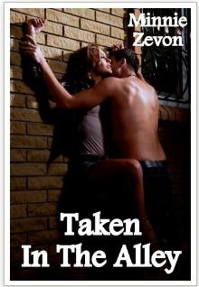 taken-in-the-alley