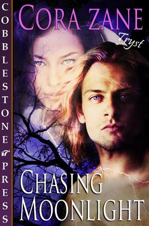 chasing-moonlight