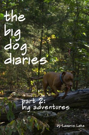Big Adventures Download PDF