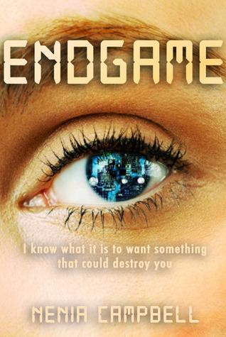 Endgame (Virtual Reality Standalones, #1)