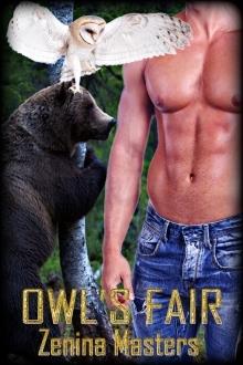 owl-s-fair