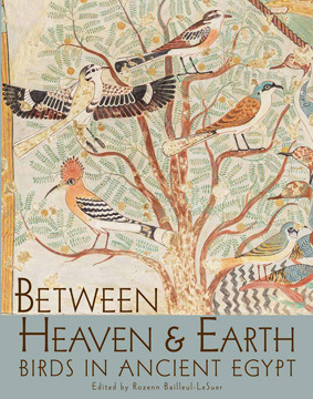 Between Heaven and Earth: Birds in Ancient Egypt
