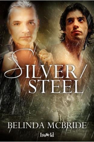 Silver/Steel by Belinda McBride