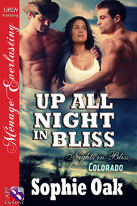 Up All Night in Bliss(Nights in Bliss, Colorado 6.5)