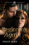 Beginning Again (Second Chance, #1)