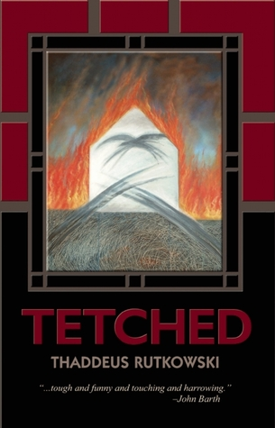 tetched-a-novel-in-fractals