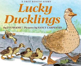 Lucky Ducklings