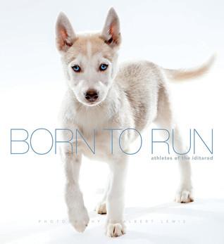 Born to Run: Athletes of the Iditarod