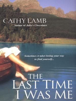 The Last Time I Was Me by Cathy Lamb