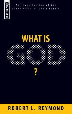What Is God?: An Investigation of the Perfections of God's Nature