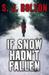 If Snow Hadn't Fallen (Lacey Flint, #1.5)