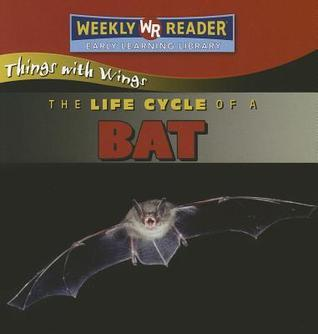 The Life Cycle of a Bat