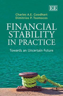 Financial Stability in Practice: Towards an Uncertain Future