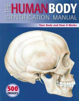 The Human Body Identification Manual: Your Body and How It Works