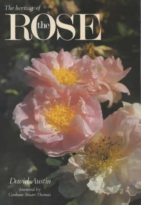 the-heritage-of-the-rose