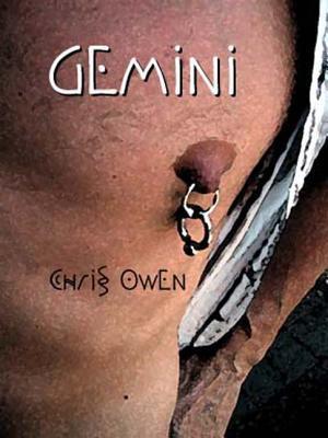 Gemini by Chris Owen