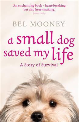 a small dog saved my life mooney bel