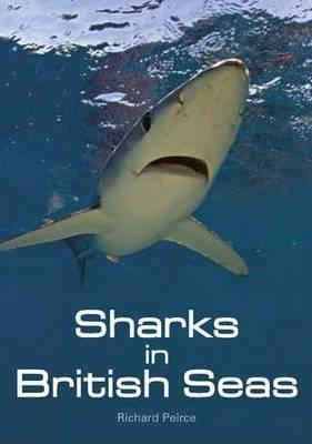 Sharks In British Seas