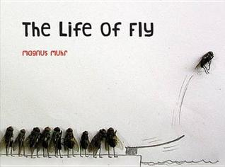 The Life of Fly by Muhr