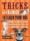 Tricks and Games to Teach Your Dog