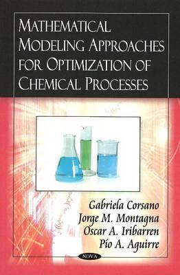 Mathematical Modeling Approaches For Optimization Of Chemical Processes