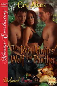 The Dom Unites Wolf and Panther (Unchained Love, #5)