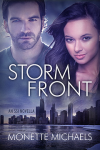 Storm Front (Security Specialists International, #2.5)
