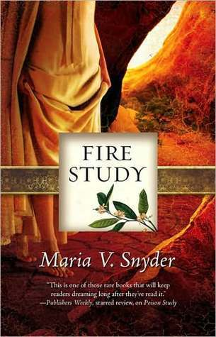 Wizzic.us Book Library Fire Study (Study, #3)