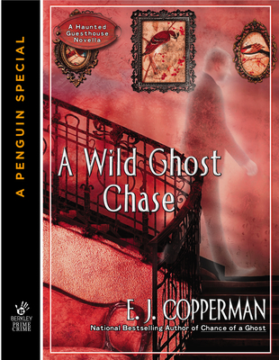 a wild ghost chase a haunted guesthouse mystery