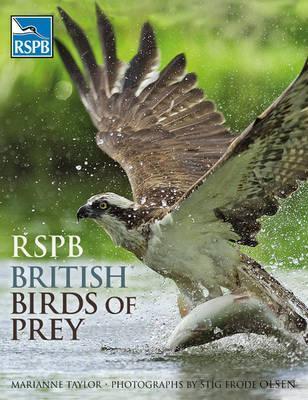 rspb-british-birds-of-prey