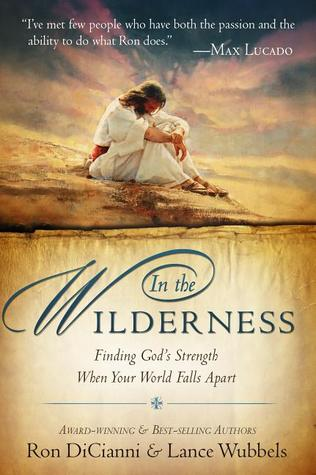 In the Wilderness: Finding God's Strength When Your World Falls Apart