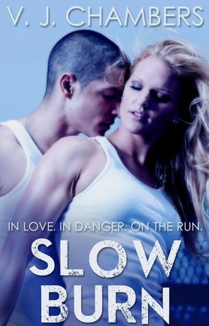 Slow Burn (Assassins, #1)