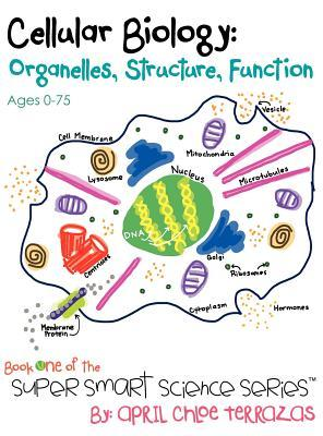 cellular-biology-organelles-structure-function