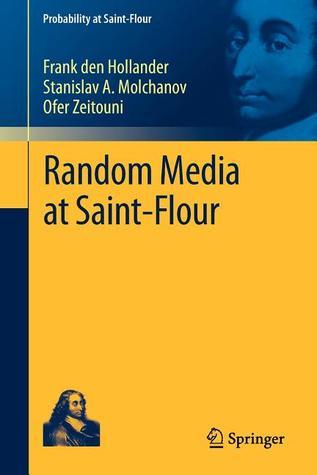 Random Media at Saint-Flour
