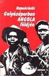 Golyózáporban Angola földjén
