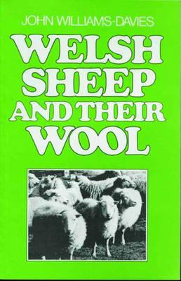 Welsh Sheep And Their Wool