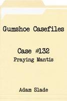 Gumshoe Casefiles: Case 132