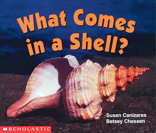What Comes In A Shell by Susan Cañizares