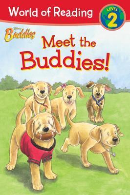 Meet the Buddies (Disney Buddies: I Can Read: Level 2)